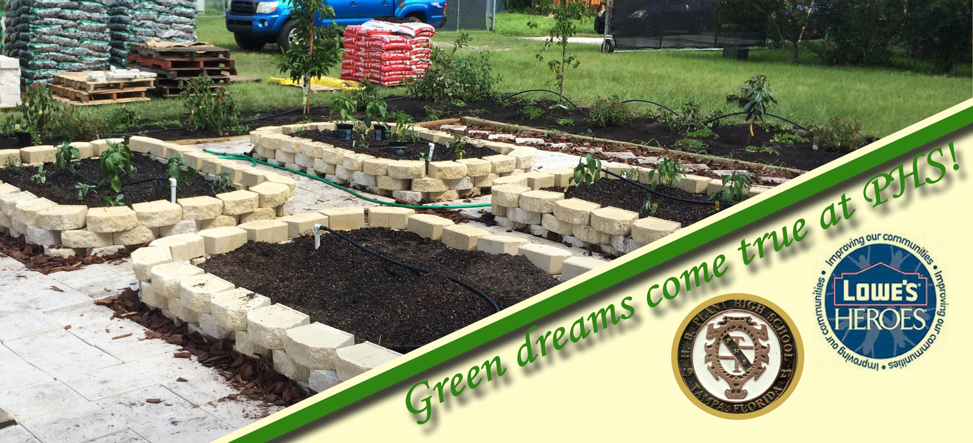 Image for Green Dreams come true at Plant High
